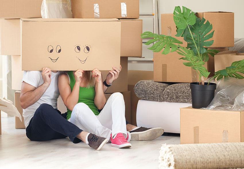 Borrowash move van