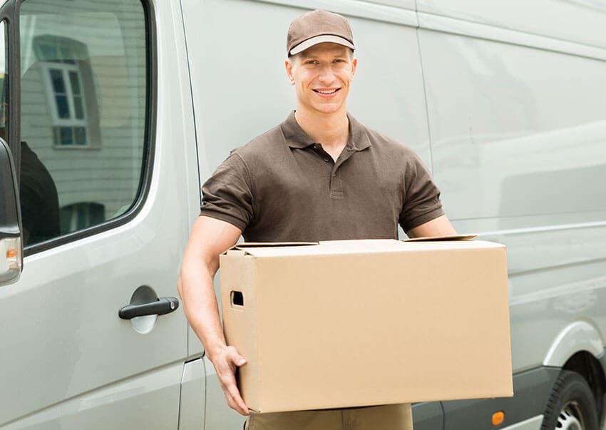 Chessington mover with van